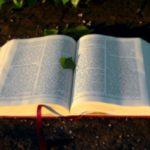 Christian base counseling Mason MI
